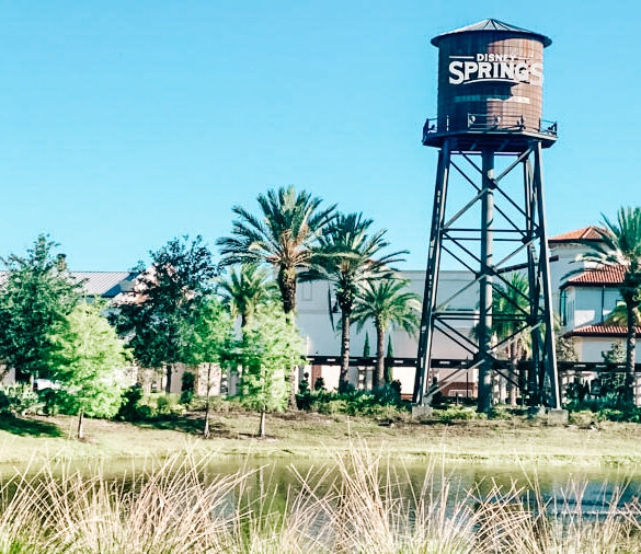 The iconic water tower the symbolizes Disney Springs